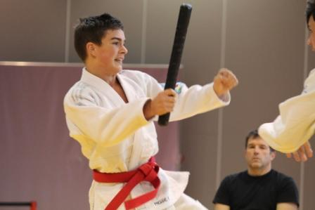 Les jujitsukas en force aux régions