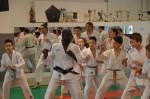 judo 080