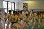 judo 083