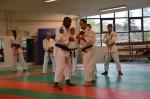 judo 113