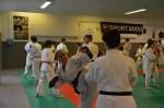 judo 135