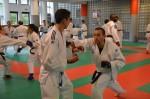 judo 179