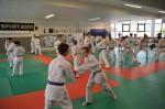 judo 196