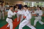 judo 209