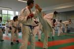 judo 259