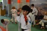 judo 273