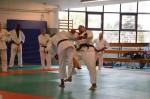 judo 281
