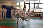 judo 282