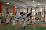 judo 285