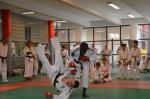 judo 286