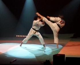 Les jujitsukas en démonstration dans le Puy de Dôme