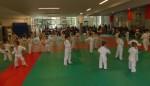 Animation Baby Judo (64)