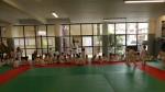Animation Baby Judo (66)