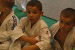 Animation Baby Judo (69)