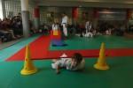 Animation Baby Judo (71)