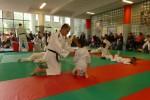 Animation Baby Judo (76)
