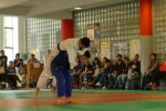 Animation Baby Judo (80)