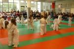 Animation Baby Judo (85)
