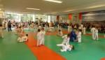 Animation Baby Judo (86)