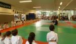 Animation Baby Judo (88)