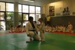 Animation Baby Judo (90)