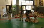 Animation Baby Judo (91)