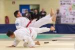 France Jujitsu 2017 (25)