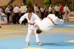 France Jujitsu 2018 (11)