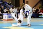 France Jujitsu 2018 (18)