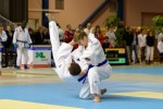 France Jujitsu 2018 (19)