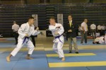France Jujitsu 2018 (32)