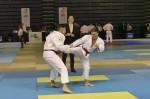 France Jujitsu 2018 (34)