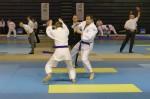 France Jujitsu 2018 (37)