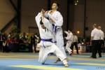 France Jujitsu 2018 (61)