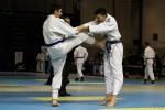 France Jujitsu 2018 (64)