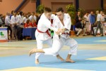 France Jujitsu 2018 (8)